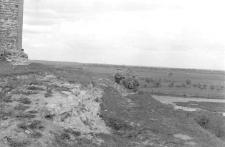 Zdjęcie krajobrazowe