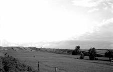 Cimoszkowice, powiat Nowogródek : teren wąwozu lessowego