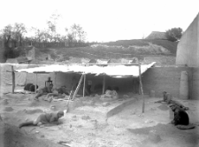 Stanowisko Horodok II : odpreparowanie poziomu kulturowego na odcinku VII - poziom czaszki mamuta 10,15 meta od powierzchni stanowiska