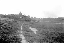 Orłów Murowany nad Wolicą : ruiny zamku