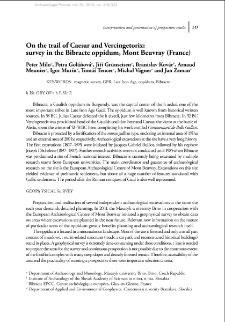 On the trail of Caesar and Vercingetorix: survey in the Bibracte oppidum, Mont Beuvray (France)