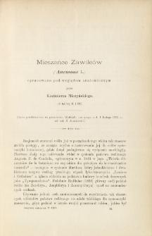 Mieszańce Zawilców (Anemone L.) opracowane pod względem anatomicznym (z tablicą II i III)
