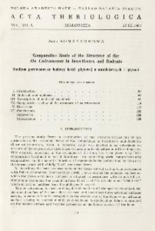 Comparative study of the structure of the os calcaneum in Insectivores and Rodents; Studium porównawcze budowy kości piętowej u owadożernych i gryzoni