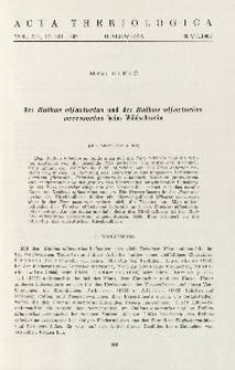 Der Bulbus olfactorius und der Bulbus olfactorius accessorius beim Wildschwein