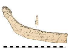Sickle (?), fragment