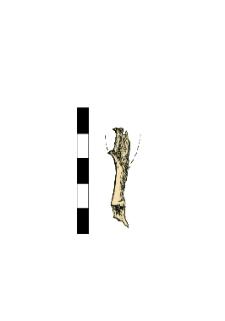 Arrowhead, damaged