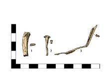 Nails: 1 headless, fragment