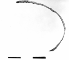 zausznica liściowata (Zastów) - analiza chemiczna