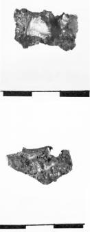 raw material (Płowki)