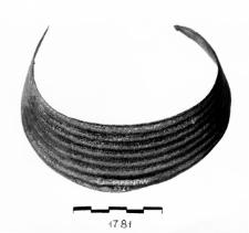 naszyjnik (mn)