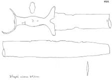 miecz (Chociwel)