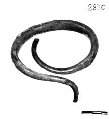 bransoleta (Dąbrowa Białogardzka)